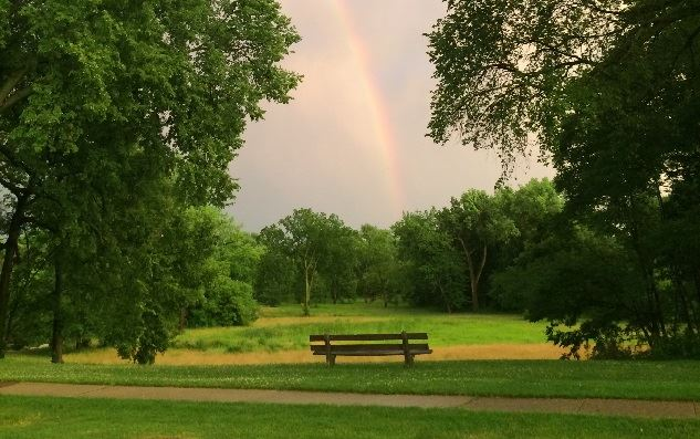 Rainbow Over Swan Pond